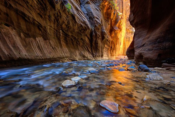 DAY 6: ZION NATIONAL PARK • SPRINGDALE